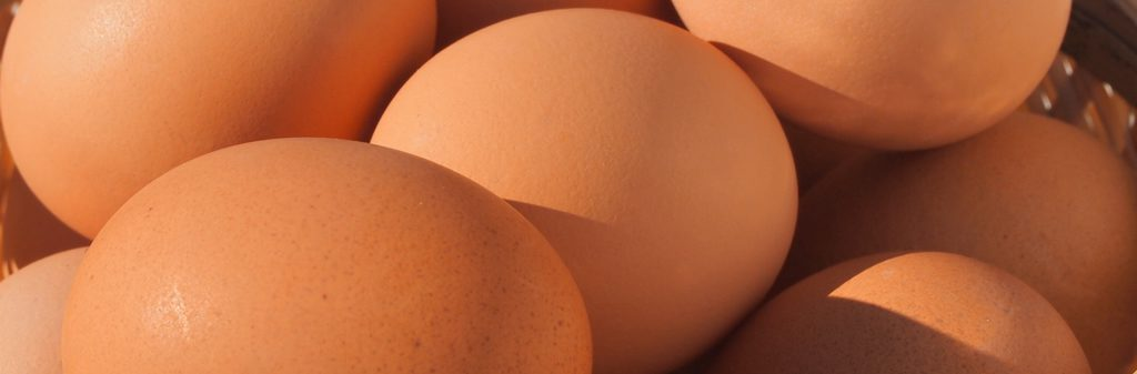 卵の取り扱い店舗(たつかの恵み写真)